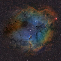 <b>IC1396 - Elephan...